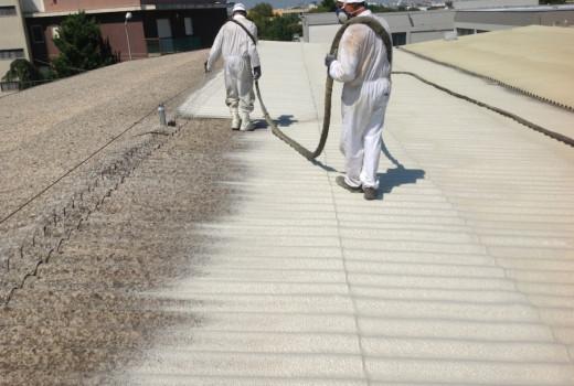 Incapsulamento ed impermeabilizzazione COVERFLEX della copertura in lastre ondulate di cemento amianto